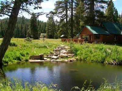 6507 SILVER FORK RD, South Lake Tahoe, CA, CA 95720 - Photo 1