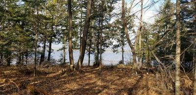 TBD SOUTH STEAMBOAT LAKE RD NW, Wilkinson Twp, MN 56633 - Photo 2