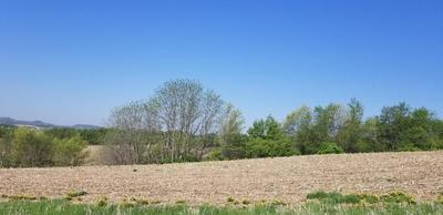 LOT 6 BIGELOW LANE, Arcadia, WI 54612 - Photo 2