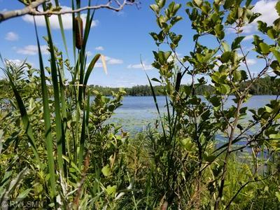TBD BURNS LAKE RD, Marcell, MN 56657 - Photo 1