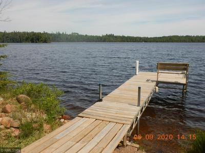 6351 HARRIET LAKE RD, East Lake Unorg. Terr., MN 55603 - Photo 1