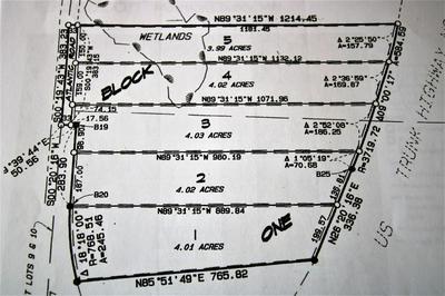 LOT 3 HIGHWAY 10, Cushing, MN 56443 - Photo 2