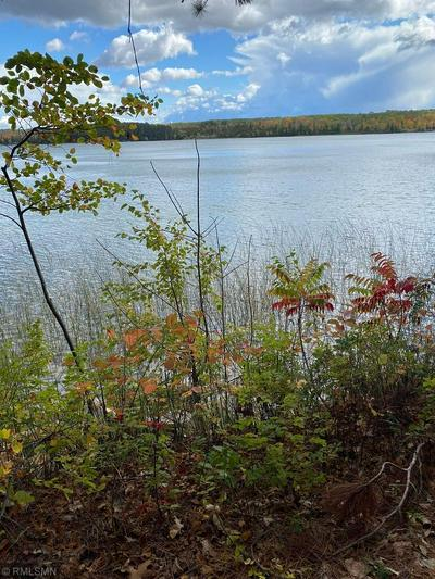 TBD TEMPLER POINT DRIVE NW, Walker, MN 56484 - Photo 2
