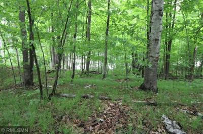 TBD S SMOKEY HOLLOW ROAD, Emily, MN 56447 - Photo 2