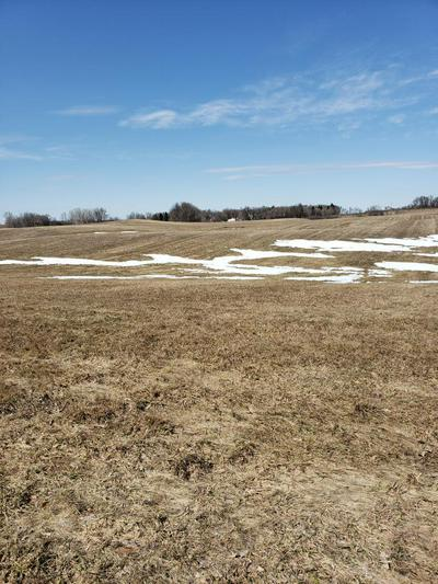 XXXX VISTA TRAIL, Brandon Twp, MN 56326 - Photo 2