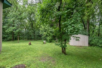 22528 PALISADE ST NE, East Bethel, MN 55005 - Photo 2