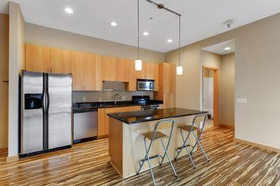 9 W FRANKLIN AVE APT 211, Minneapolis, MN 55404 - Photo 2