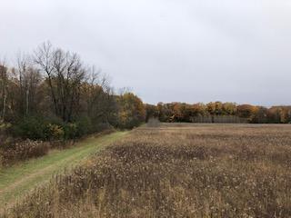 120 ST, Stewartville, MN 55976 - Photo 1