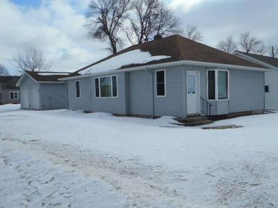 100 ORCHARD ST, Sanborn, MN 56083 - Photo 2