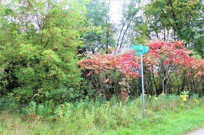 2118 171ST AVENUE NE, Ham Lake, MN 55304 - Photo 2