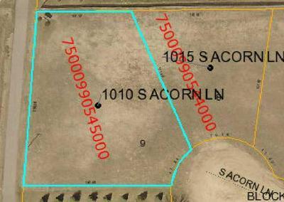 1010 ACORN LN, Parkers Prairie, MN 56361 - Photo 1