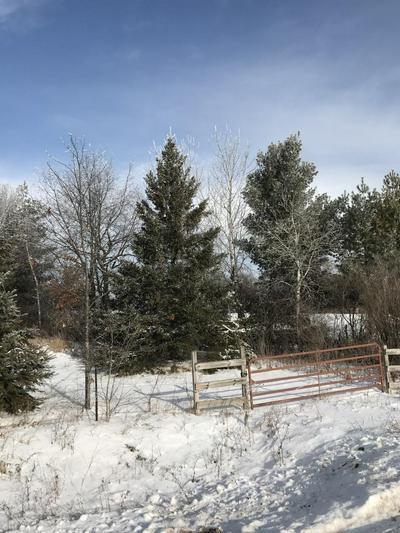 0 10 3/4, Prairie Lake Twp, WI 54728 - Photo 1