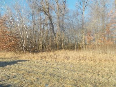 TBD STATE HWY 87 SW, Backus, MN 56435 - Photo 2