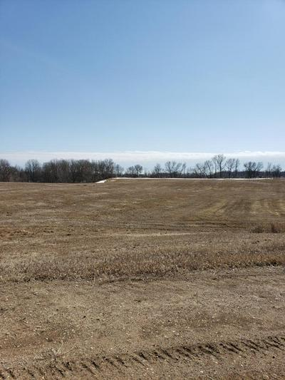 XXXX VISTA TRAIL, Brandon Twp, MN 56326 - Photo 1