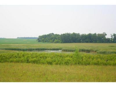 XXX CO HWY 1, Shaokatan Twp, MN 56136 - Photo 2