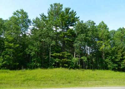 50204206-TBD COUNTY RD 63, Cohasset, MN 55721 - Photo 1