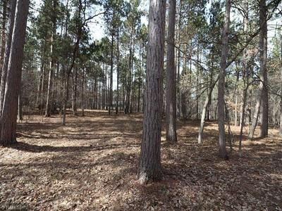 LOT 9 EXPLORER CIRCLE, Park Rapids, MN 56470 - Photo 1