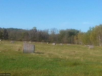 XXX 189 NE HWY 23, Foreston, MN 56330 - Photo 1