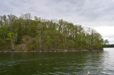 XXX TEMPLER POINT DR NW, Walker, MN 56484 - Photo 2