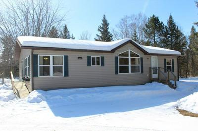 17600 253RD AVE, NEVIS, MN 56467 - Photo 1