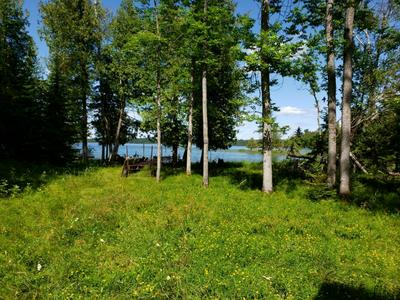50511 EVERGREEN POINT ROAD, Marcell, MN 56657 - Photo 1
