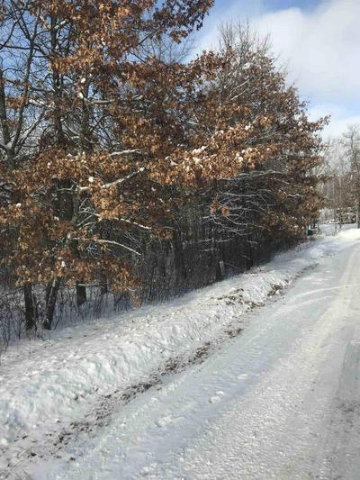 TBD E BLUEBERRY RIVER DRIVE, Menahga, MN 56464 - Photo 2