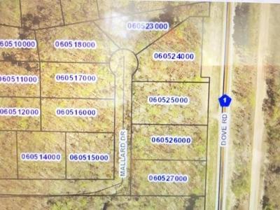 LOT 75 MALLARD DRIVE DRIVE, Cushing Township, MN 56475 - Photo 1