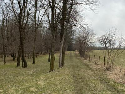 XXXXX 160TH, Paynesville Township, MN 56362 - Photo 1