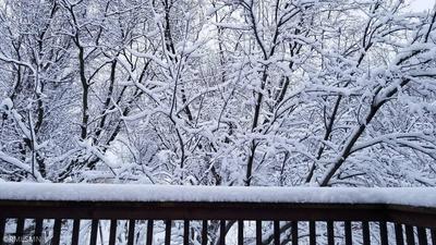 16334 JAVARI CT, Lakeville, MN 55044 - Photo 1