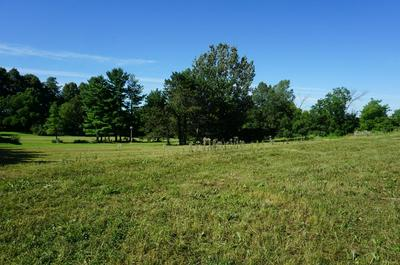 LOT 3 PANTHER DRIVE, Ellsworth, WI 54011 - Photo 2