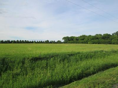 1107 160TH ST, Hammond Township, WI 54015 - Photo 2
