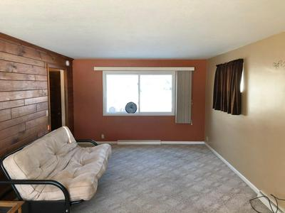 210 S PAFFRATH AVE, Springfield, MN 56087 - Photo 2