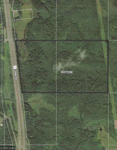 XXXX HWY 53, Cotton Township, MN 55724 - Photo 2