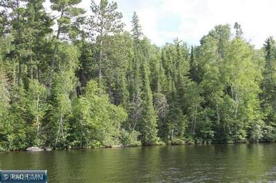 PARCEL A GRASSY POINT, Cook, MN 55723 - Photo 2