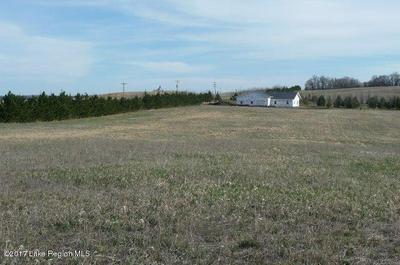 XXXX CANTERBURY SANDS TRAIL, Everts Township, MN 56515 - Photo 2