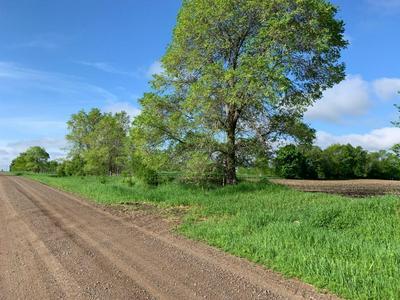 NA LLAMA, Dalbo Township, MN 55017 - Photo 1