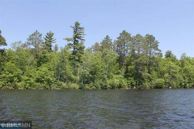 TBD GRASSY POINT, Cook, MN 55723 - Photo 1