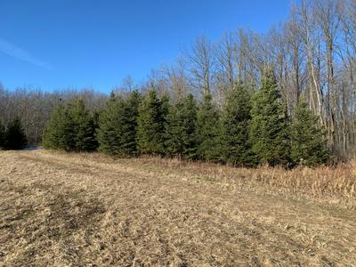 NA FLEMING LOGGING, Hinckley, MN 55037 - Photo 2