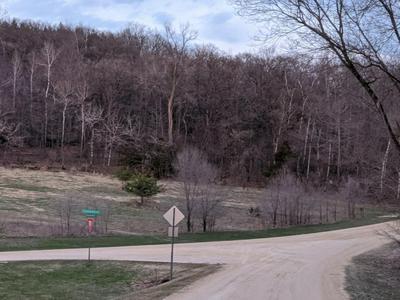 XXXX SUNSET BAY LANE NE, Oronoco Township, MN 55991 - Photo 2