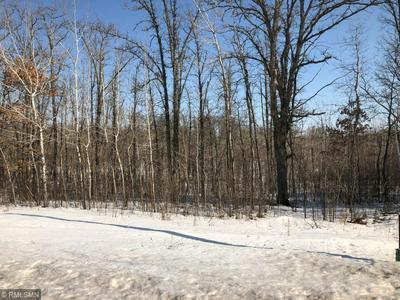 XXX LAKE AVENUE, Turner Township, MN 55760 - Photo 1