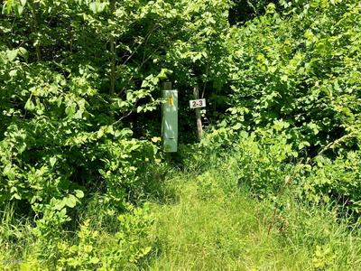 XXX LOON POINT DRIVE (LOT 1), Kensington, MN 56343 - Photo 1