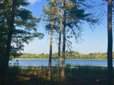 LOT 1 W EAGLE LAKE ROAD, Fifty Lakes, MN 56448 - Photo 1