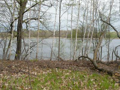 XXX CROOKED LAKE LANE SW, Farwell, MN 56327 - Photo 2