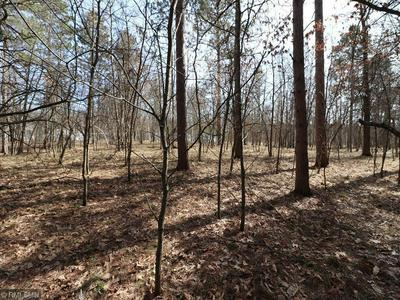 LOT 8 EXPLORER CIRCLE, Park Rapids, MN 56470 - Photo 1