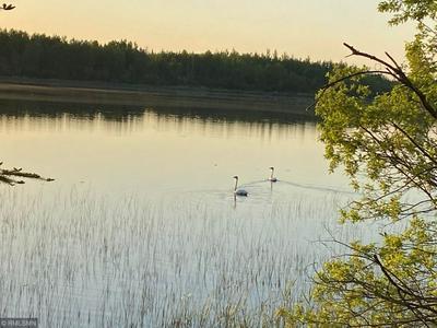 20352 RICE LAKE RD, Nashwauk, MN 55769 - Photo 2