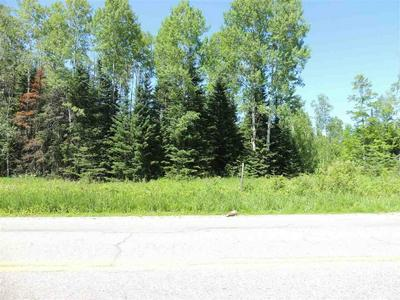 4207 HWY 286, Marcell, MN 56657 - Photo 1