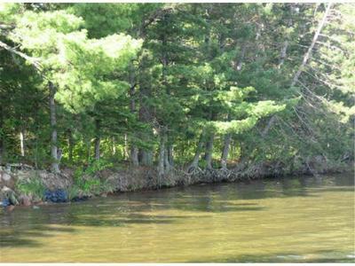 TBD LOWER TEN MILE LAKE ROAD NW, Hackensack, MN 56452 - Photo 1