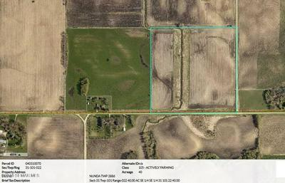 TBD STATE LINE ROAD, Emmons, MN 56029 - Photo 1