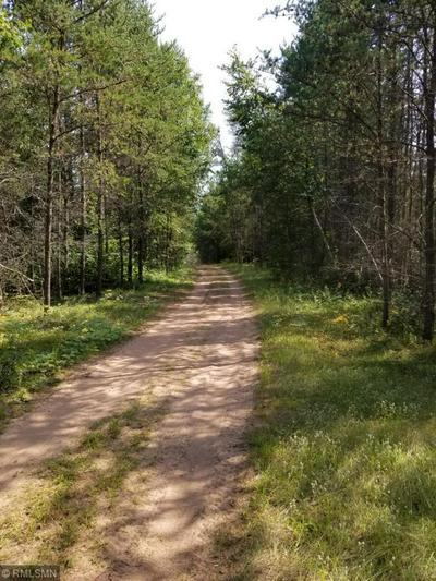 XXX ROCK DAM ROAD, Finlayson, MN 55735 - Photo 2