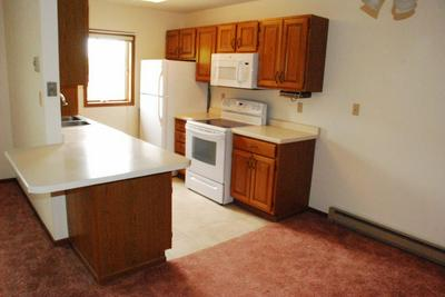 222 SARGENT DR APT 202, Red Wing, MN 55066 - Photo 2